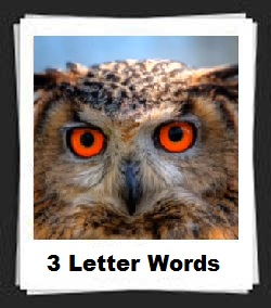 100 Pics 3 Letter Words Answers
