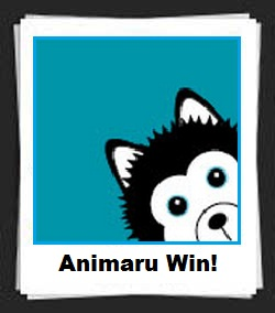 100 Pics Animaru Wins Answers
