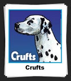 100 Pics Crufts Answers