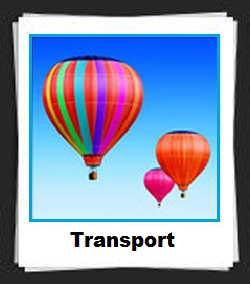 100 Pics Transport Answers