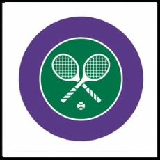 100 Pics Sports Logo Level 16