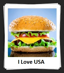 100 Pics I Love USA Answers