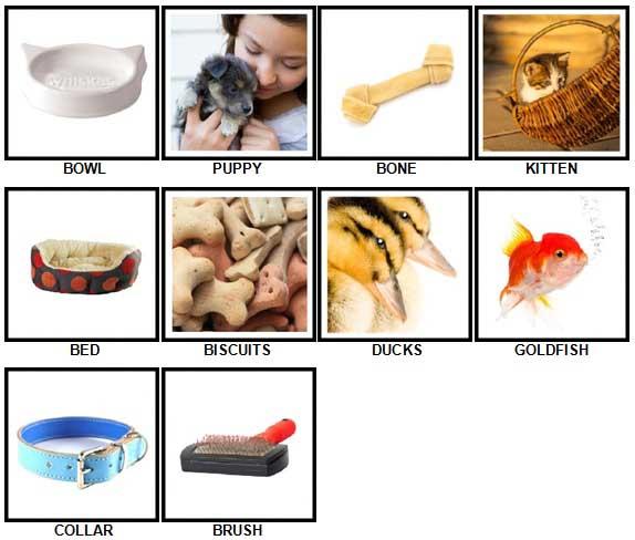 100 Pics Pets Answers 1-10