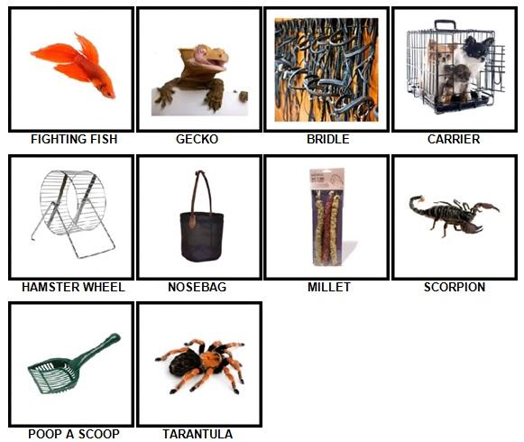 100 Pics Pets Answers 51-60