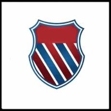 100 Pics Sports Logo Level 73