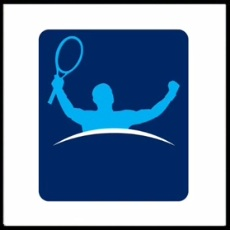 100 Pics Sports Logo Level 81