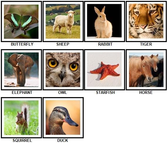 100 Pics Animals 1-10