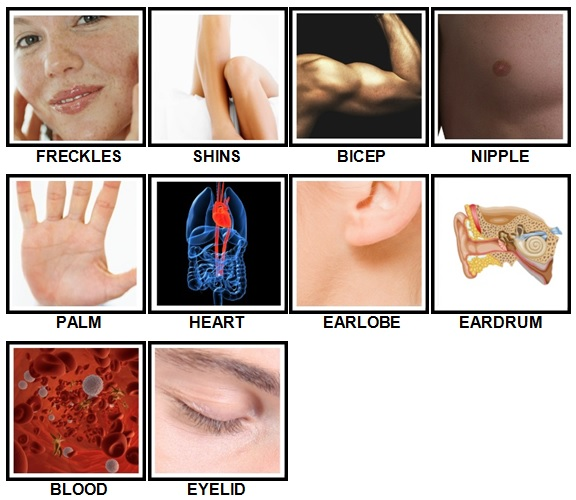 100 Pics Body Parts Level 41-50 Answers