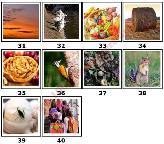 100 Pics Autumn Level 31 Answers