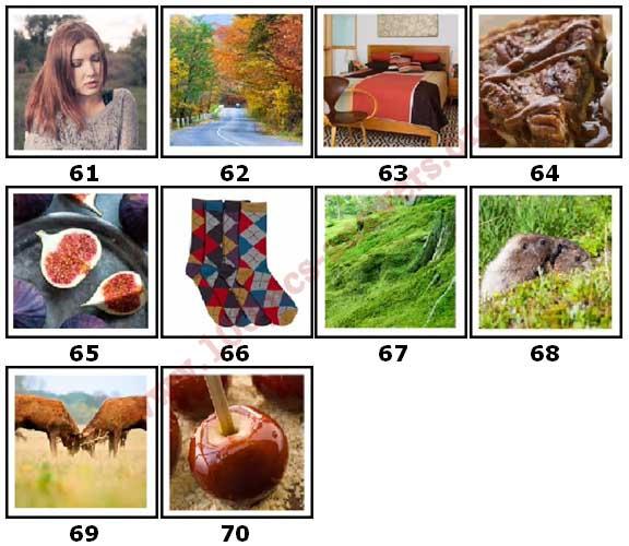 100 Pics Autumn Level 61 Answers