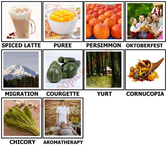 100 Pics Autumn Level 81-90 Answers