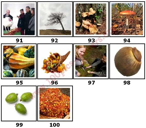 100 Pics Autumn Level 91 Answers