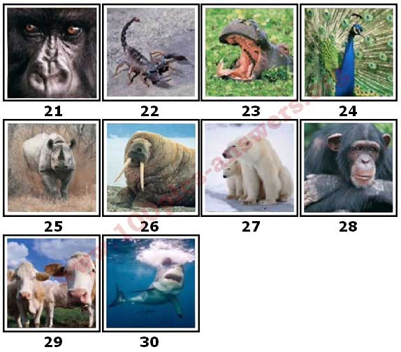 100 Pics Animal Planet Level 21 Answers
