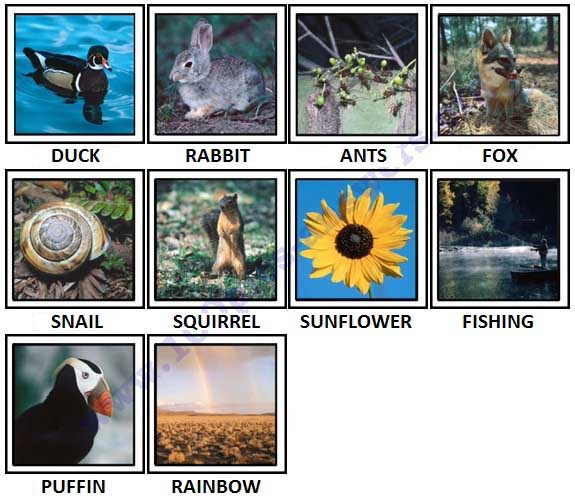 100 Pics North America Answers Level 1-10