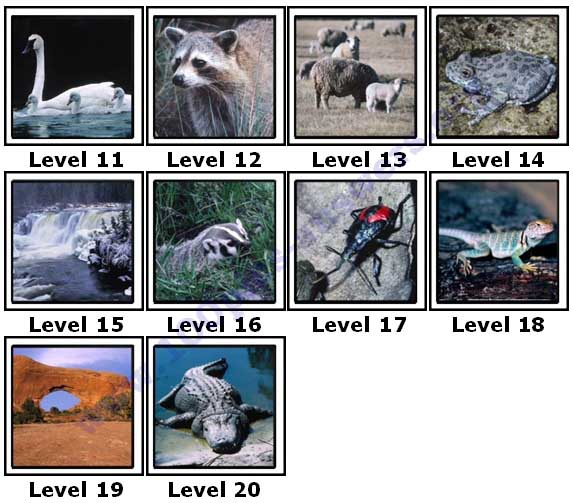 100 Pics North America Answers11