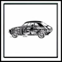 100 Pics Classic Cars Level 40