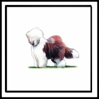 100 Pics Crufts Level 43