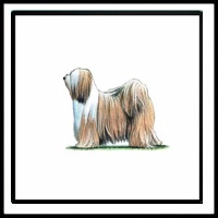 100 Pics Crufts Level 72