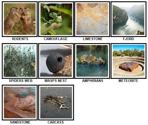 100 Pics Nature Level 51-60 Answers