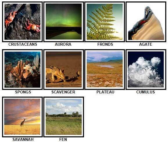 100 Pics Nature Level 61-70 Answers