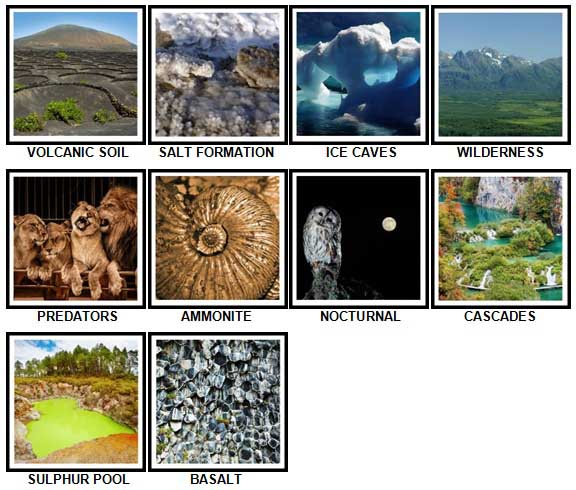 100 Pics Nature Level 71-80 Answers