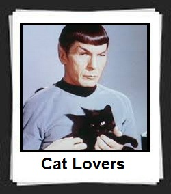 100 Pics Cat Lovers Answers