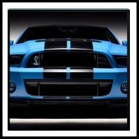 100 Pics Ford Cars Level 9