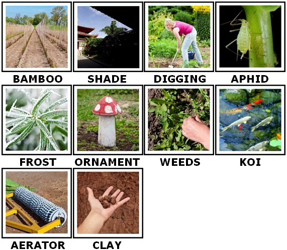 100 Pics Gardening Answers 41