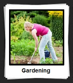 100 Pics Gardening Answers