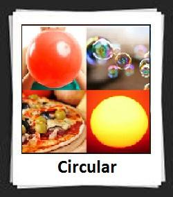 100 Pics Circular Answers