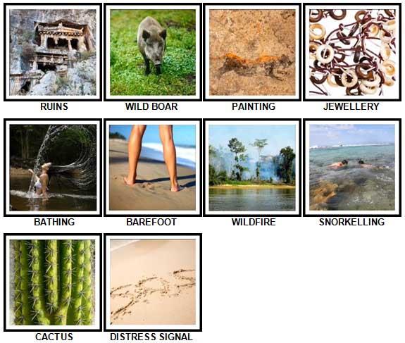 100 Pics Desert Island Level 41-50 Answers