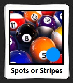 100 Pics Spots or Stripes Answers