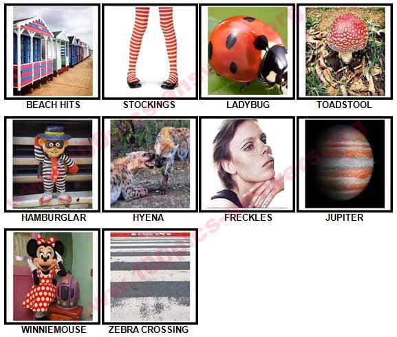 100 Pics Spots or Stripes Answers 21-30
