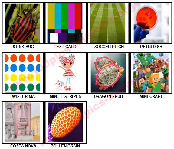 100 Pics Spots or Stripes Answers 81-90