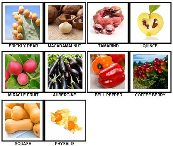 100 Pics Fruit and Nut Level 81-90 Answers