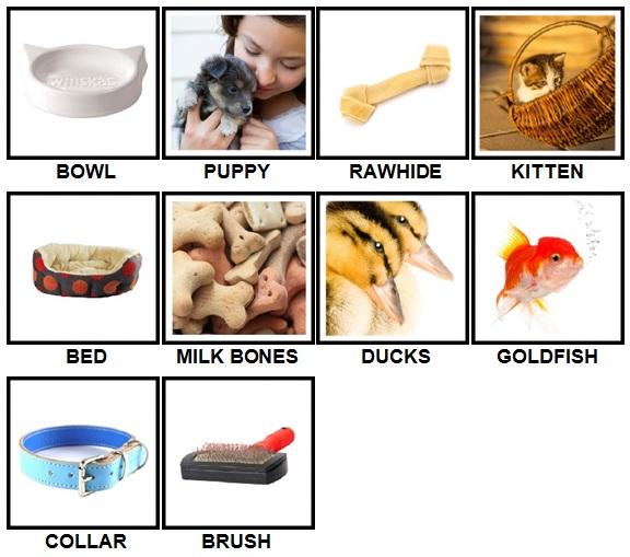 100 Pics Pets Answers All Levels