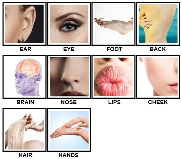 100 Pics Body Parts Answers Level 1-10