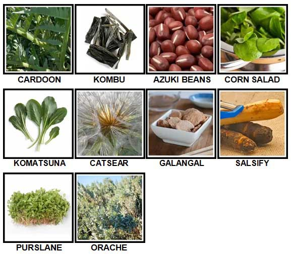 100 Pics Vegetables Level 91-100 Answers