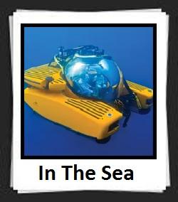 100 Pics In The Sea Answers