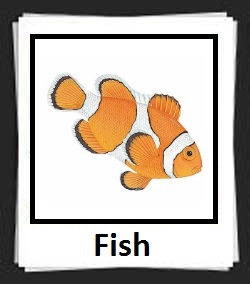100 Pics Fish Answers