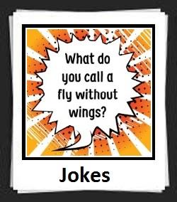 100 Pics Jokes Answers